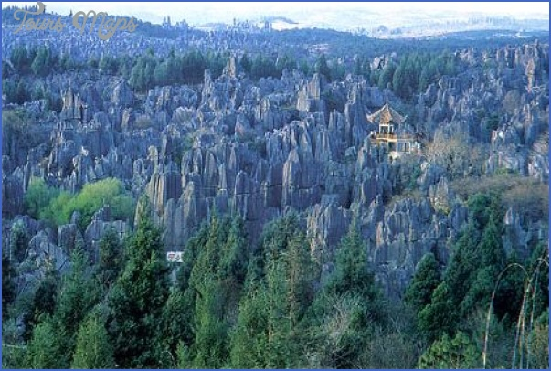 the stone forest china 4 The Stone Forest China