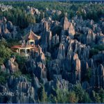 the stone forest china 5 150x150 The Stone Forest China