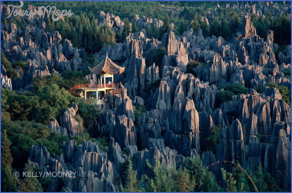The Stone Forest China_5.jpg