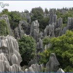 The Stone Forest China_6.jpg