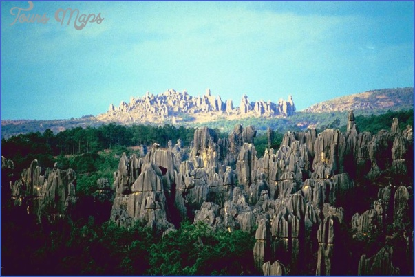 the stone forest china 7 The Stone Forest China