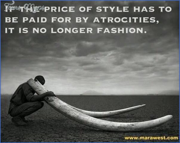wildlife travel quotes 0 Wildlife Travel Quotes