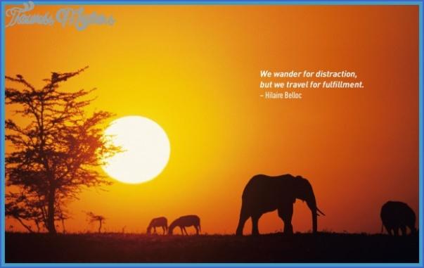 wildlife travel quotes 1 Wildlife Travel Quotes
