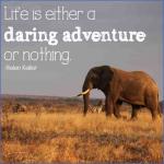 wildlife travel quotes 14 150x150 Wildlife Travel Quotes