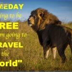 wildlife travel quotes 3 150x150 Wildlife Travel Quotes