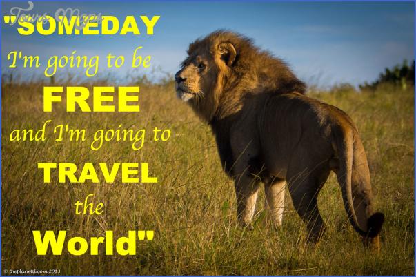wildlife travel quotes 3 Wildlife Travel Quotes