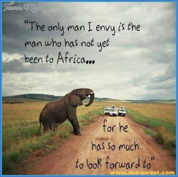 wildlife travel quotes 4 Wildlife Travel Quotes