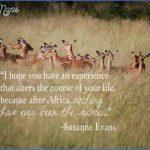 wildlife travel quotes 6 150x150 Wildlife Travel Quotes