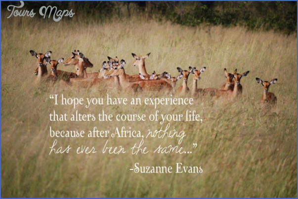 wildlife travel quotes 6 Wildlife Travel Quotes