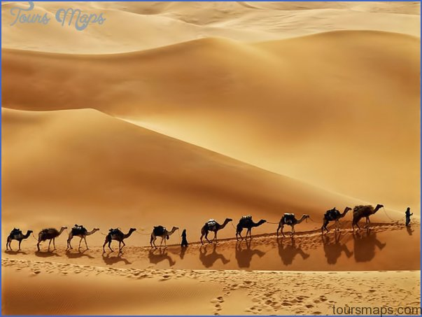 Wildlife Travel To Rub'al-Khali_0.jpg