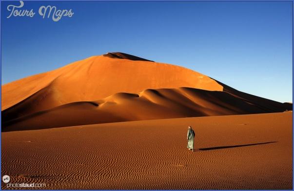 Wildlife Travel To Rub'al-Khali_4.jpg