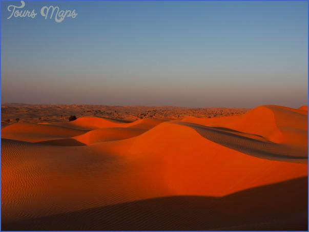 Wildlife Travel To Rub'al-Khali_8.jpg