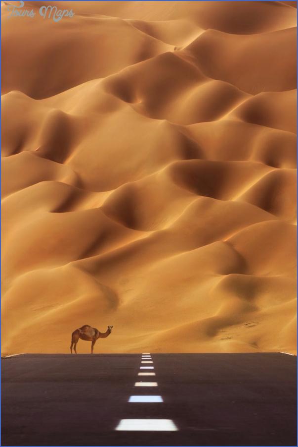 Wildlife Travel To Rub'al-Khali_9.jpg