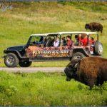 wildlife travel to us 7 150x150 Wildlife Travel To US