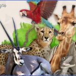 wildlife world travel  0 150x150 Wildlife World Travel