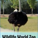 Wildlife World Travel _2.jpg