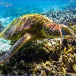 world wildlife travel tours  18 150x150 World Wildlife Travel Tours