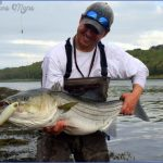 canal bait and tackle fishing report 1 150x150 Canal Bait And Tackle Fishing Report