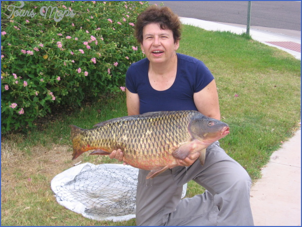 canal bait and tackle fishing report 10 Canal Bait And Tackle Fishing Report