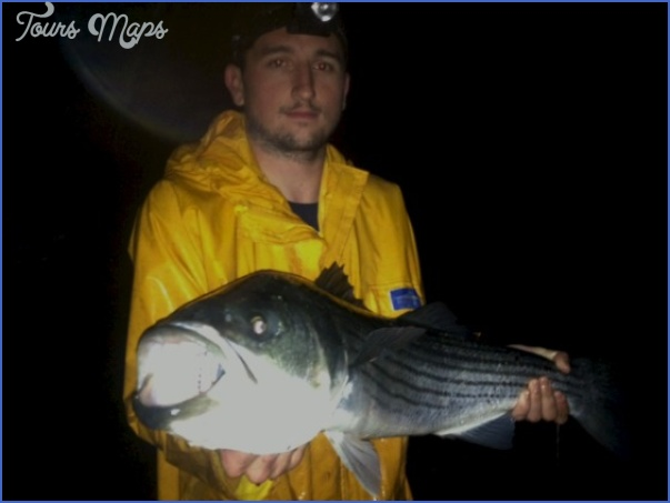 canal bait and tackle fishing report 4 Canal Bait And Tackle Fishing Report