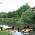 canal fishing uk 1 150x150 Canal Fishing Uk
