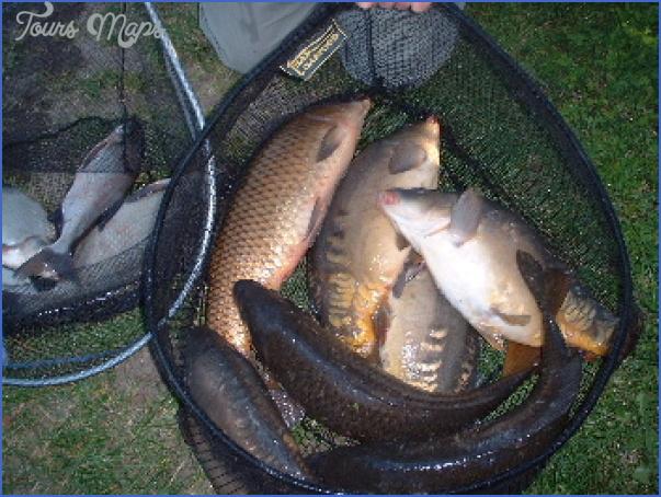 canal fishing uk 2 Canal Fishing Uk