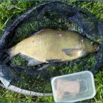 chesterfield canal fishing 9 150x150 Chesterfield Canal Fishing