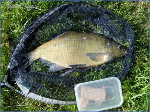 chesterfield canal fishing 9 Chesterfield Canal Fishing
