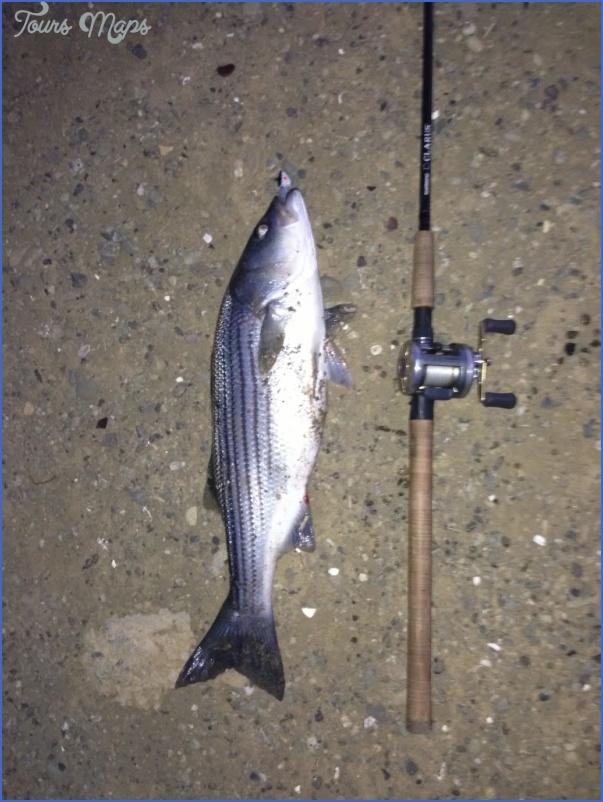 delta mendota canal fishing 2 Delta Mendota Canal Fishing