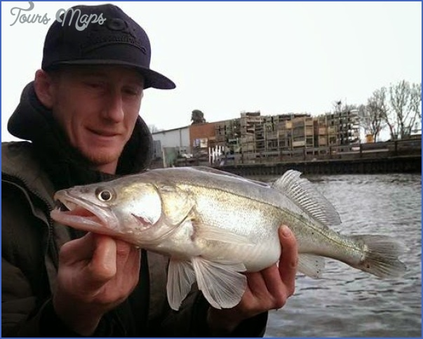 fishing gloucester canal 5 Fishing Gloucester Canal