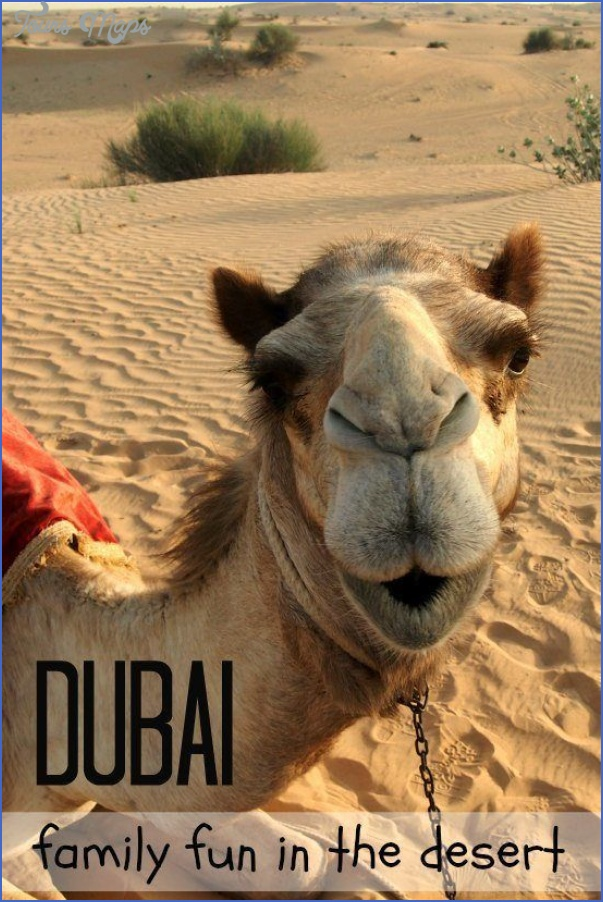 Hire Adventure Emirates To Enjoy Your Vacation In Abu Dhabi_7.jpg