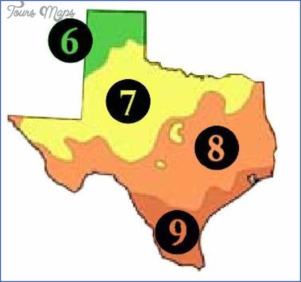 TEXAS MAP ZONE_11.jpg