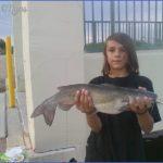 arizona canal fishing 20 150x150 Arizona Canal Fishing