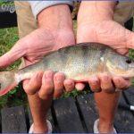 ashby canal fishing 6 150x150 Ashby Canal Fishing