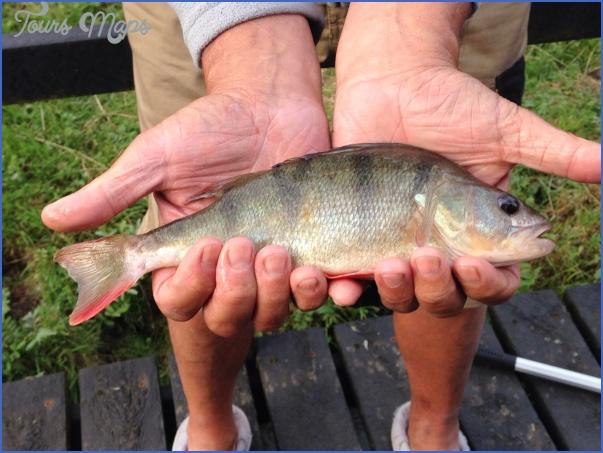 ashby canal fishing 6 Ashby Canal Fishing