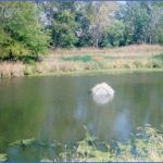 hennepin canal fishing 15 150x150 Hennepin Canal Fishing