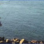 how to fish the cape cod canal 11 150x150 How To Fish The Cape Cod Canal