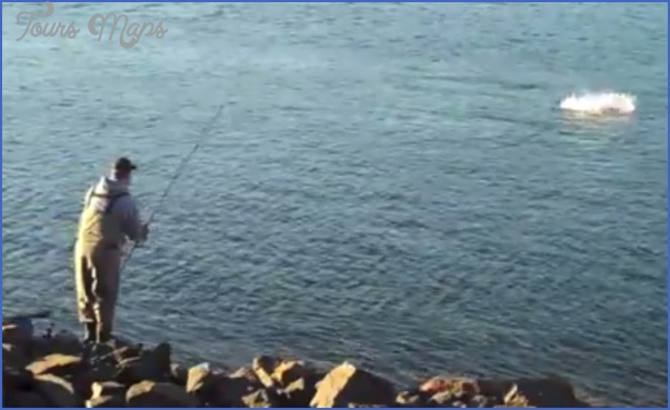 how to fish the cape cod canal 11 How To Fish The Cape Cod Canal