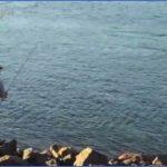 maxresdefault 150x150 Striper Fishing Cape Cod Canal