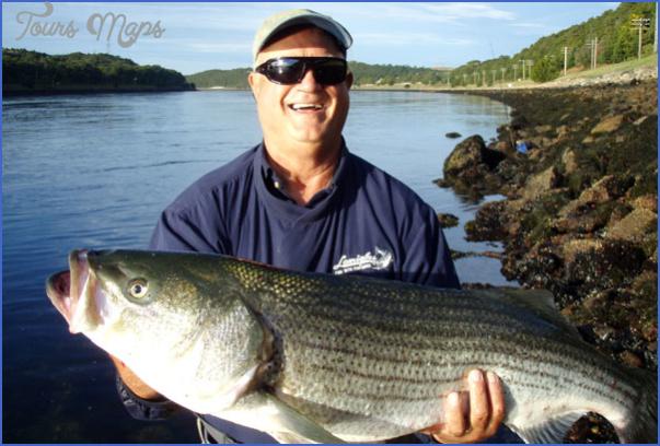 pg12 ronarra 02 Striper Fishing Cape Cod Canal