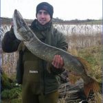 pike fishing canals 15 150x150 Pike Fishing Canals