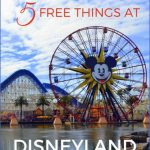 Planet Explorers Cruise Travel Tips in Disneyland_2.jpg