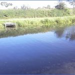 selby canal fishing 0 150x150 Selby Canal Fishing