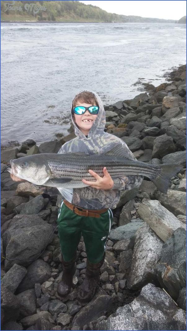 Striper Fishing Cape Cod Canal Toursmaps Com