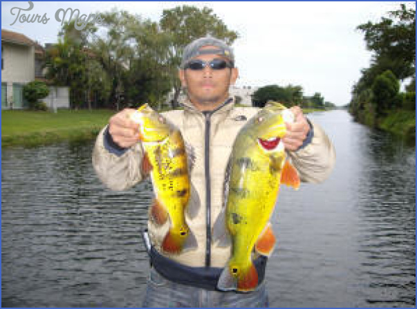 types of fish in cape coral canals 6 Types Of Fish In Cape Coral Canals