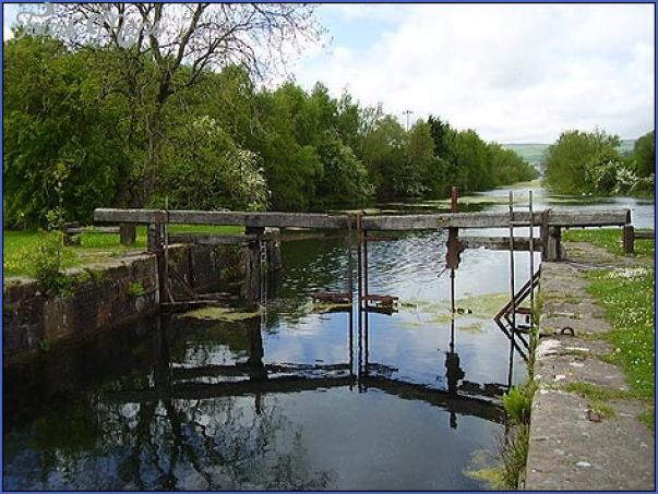 ulverston canal fishing 0 Ulverston Canal Fishing