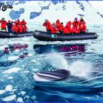 antarctic expedition cruises 1 150x150 Antarctic Expedition Cruises