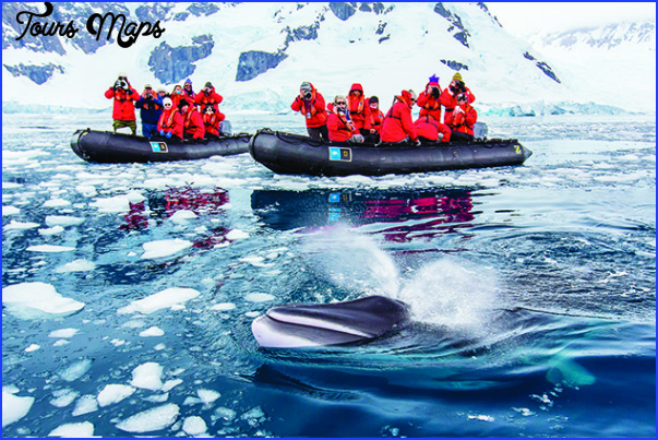 antarctic expedition cruises 1 Antarctic Expedition Cruises