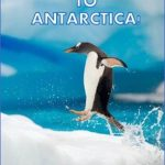 antarctica travel cheap 1 150x150 Antarctica Travel Cheap