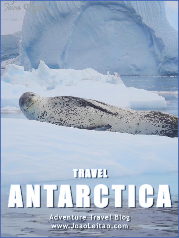antarctica travel guides 7 Antarctica Travel Guides